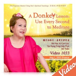 Video-1033 A Donkey Lesson: Use Every Second to Meditate